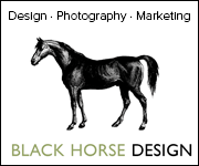 Black Horse Design (West Midlands Horse)
