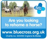 Blue Cross (West Midlands Horse)