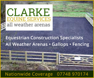 Clarke Equine Services 2020 (West Midlands Horse)
