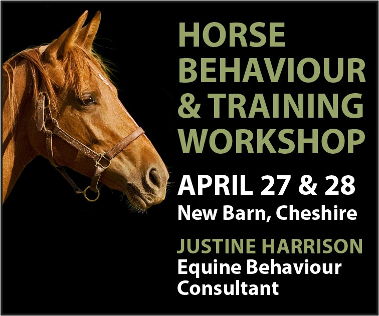 Justine Harrison Workshop April 2019 (West Midlands Horse)