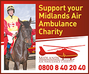 Midlands Air Ambulance (West Midlands Horse)