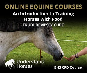 UH - An Introduction To Training Horses With Food (West Midlands Horse)